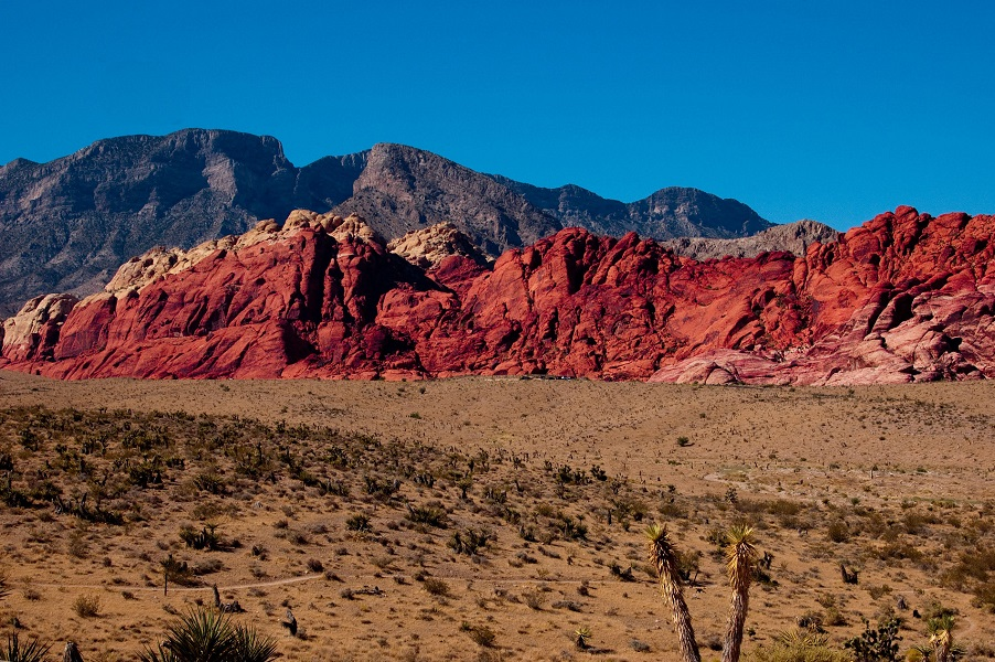 red-rock-image1